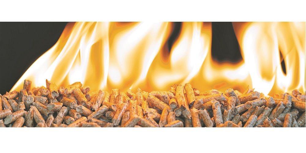 Dřevěné pelety - energetické palivo z biomasy